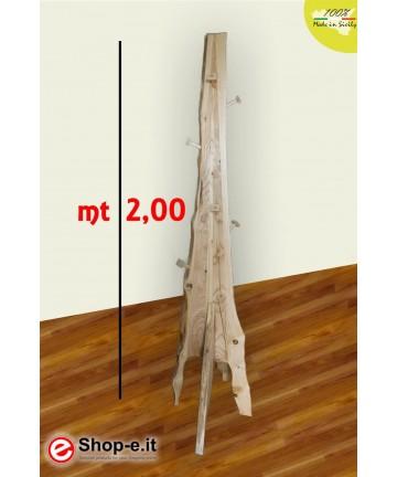 Appendino in castagno da metri 2 di altezza