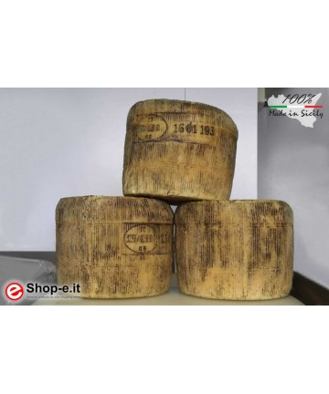 Semi-mature Sicilian sheep cheese