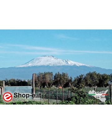 L'allevamento ai piedi dell'Etna