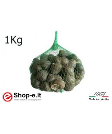 Helix Aspersa Muller 1 kg bag