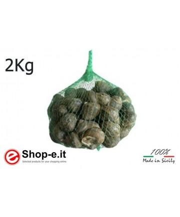 Helix Aspersa Muller gastronomy snails 2kg pack