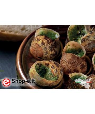Lumache da gastronomia Helix Aspersa Muller