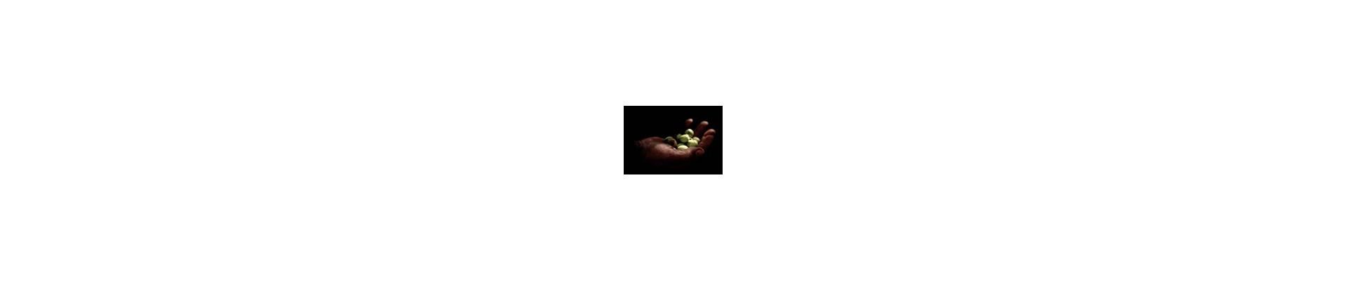 Olio biologico extra vergine d'oliva