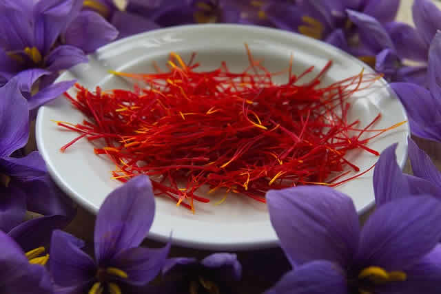 Saffron from Sicily